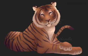 Tigers are the best. by Estherella