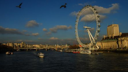 Pigeons above the River Thames by JuicyLung