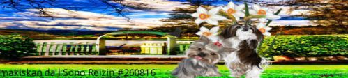 Sweet Pups Banner by frozenintime93