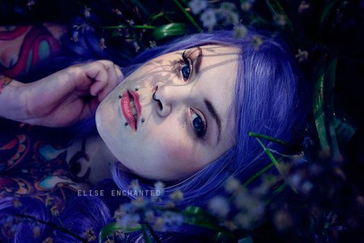Purple night by EliseEnchanted