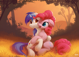 Request: Sunset by DraconidsMXZ