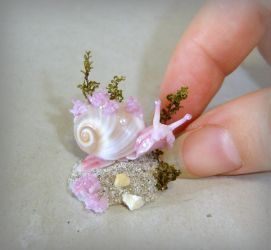 Miniature Sea snail by Fairiesworkshop