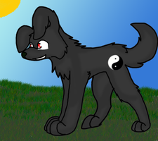 Yin-yang puppy :3 by paragonthapuppy