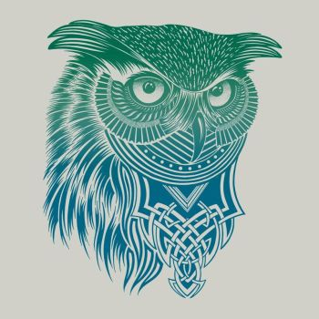 Warrior Owl by rcaldwell by Design-By-Humans