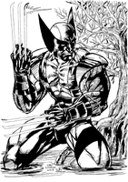 Wolverine in Water (Inks) by HumanAbandonware