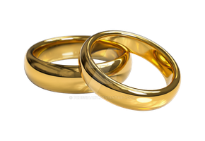 Two gold rings on a transparent background by PRUSSIAART