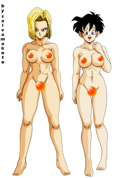 Commission - C18 and Videl by salvamakoto