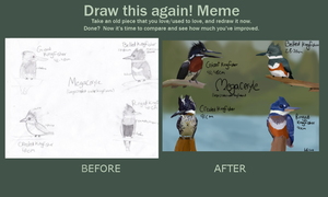Before and after- Megaceryle Kingfishers by ringette-and-riding