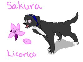 My Dog Lico As Sakura by lalalala3