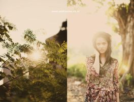 Lazy Afternoon Warm II by andriazmo