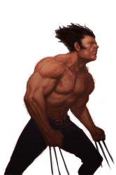 WOLVERINE WEDNESDAY - 48 by reau