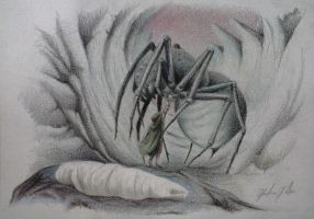 Shelob by Giulianog