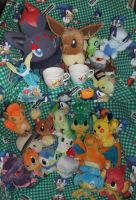 Pokemon Plushies, Pokedolls, and stuff for sale