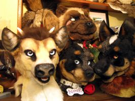 Decapitated Group Shot by Beetlecat