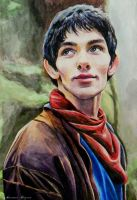 Merlin by Nastyfoxy