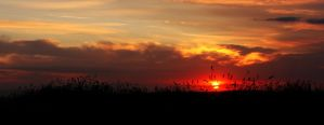 Scrabo Sunset II by Gerard1972