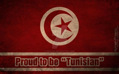 Tunisian Grunge Flag by Fnayou