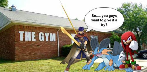Ike, Swampert and Knuckles go to the gym by Metaffet35