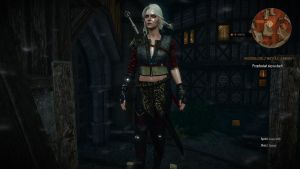 Witcher 3 Wild Hunt Ciri alternative look by Witcher122