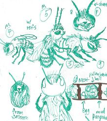 Blue Orchard Bee Studies by Paws-for-a-Moment