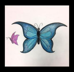 Butterflies by DH-Students-Gallery