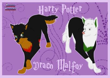 CM - Harry and Draco - WP by RussianKunoichi