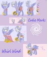 Whirl Wind Character Sheet by FancyFox02