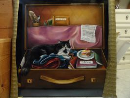 The suitcase by Sennish