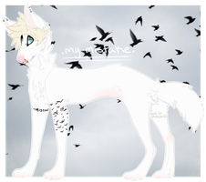 Aesthetic Adoptable - .my mistake. by alt-prince