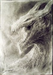 Charcoal Dragon Head - finished by Manzanedo