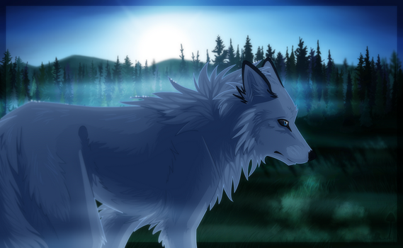 White Wolf by Aliuh