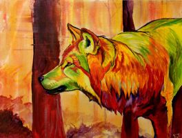 The Color of Wild by FeraCoyote