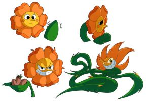 Cagney Carnation Warmups by whirlwynd