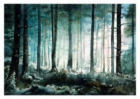 Forest by lotusdigitalworks