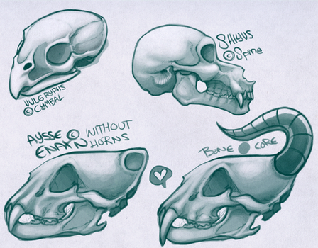 Another set o' skulls by HaanPere