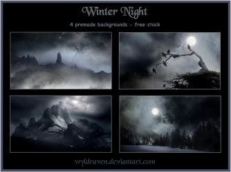 Winter Night backgrounds by wyldraven