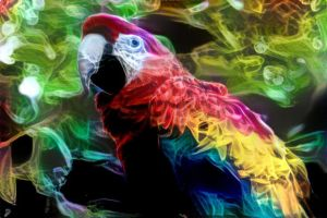 Smoke parrot by Aurora-Alley
