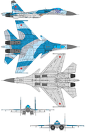Sukhoi Su-33 Flanker D by bagera3005