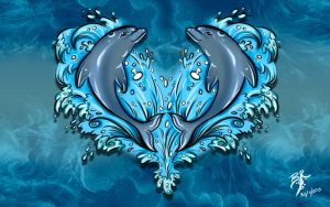 THE DOLPHINS by ZUNDREK