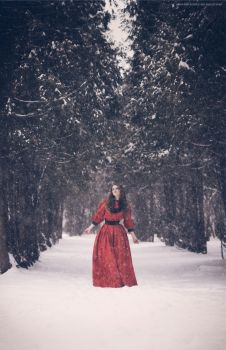 Winter Tale by Snowfall-lullaby