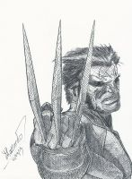 Wolverine by ZACCARDIUS7