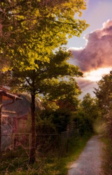 Path to Sunset by NelPhotography