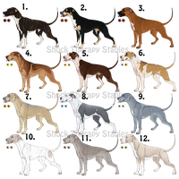 APBT Adoptables 2 - CLOSED by ShockTherapyStables