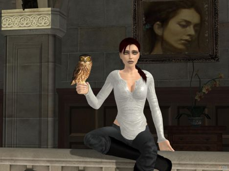 I don't understand why Lara call me owl by DoppieCroft