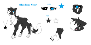 Shadow Star ( Ref Sheet) by Galaxy-StarsOwO