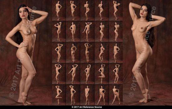 Stock:  New Model Noella 25 Elegant Standing Nudes by ArtReferenceSource