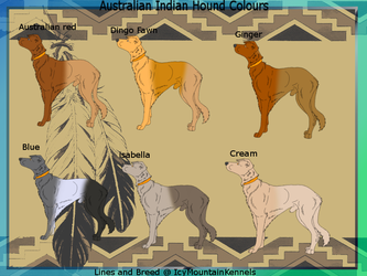Australian Indian Hound  Colours sheet by IcyMountainKennels