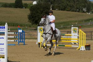 Grey Horse Acceleration towards Jump by LuDa-Stock