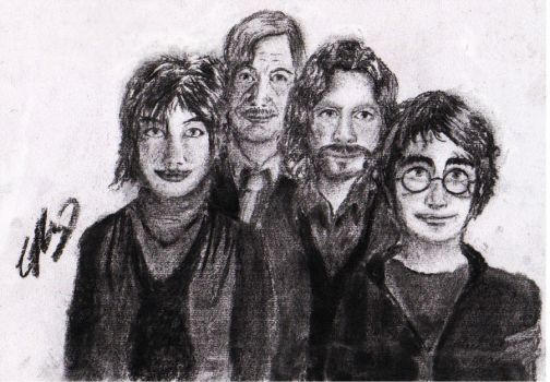 Harry Potter, Sirius Black, Tonks and Lupin by Half--the--Fun