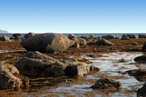 more boulders by LucieG-Stock